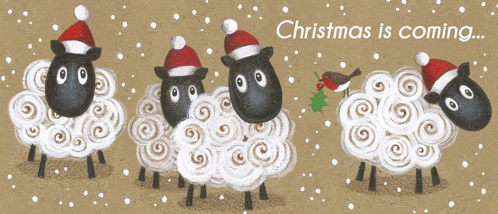 Christmas Sheep design
